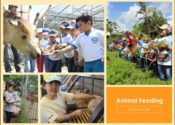 Animal Feeding di Jendela Alam
